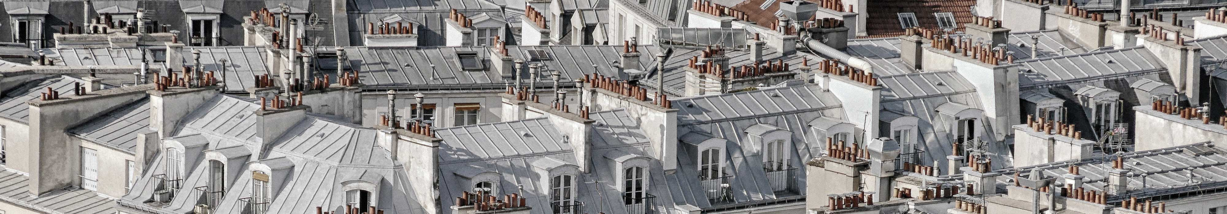 Cityscape of European houses with the phrase functional medicine written on top